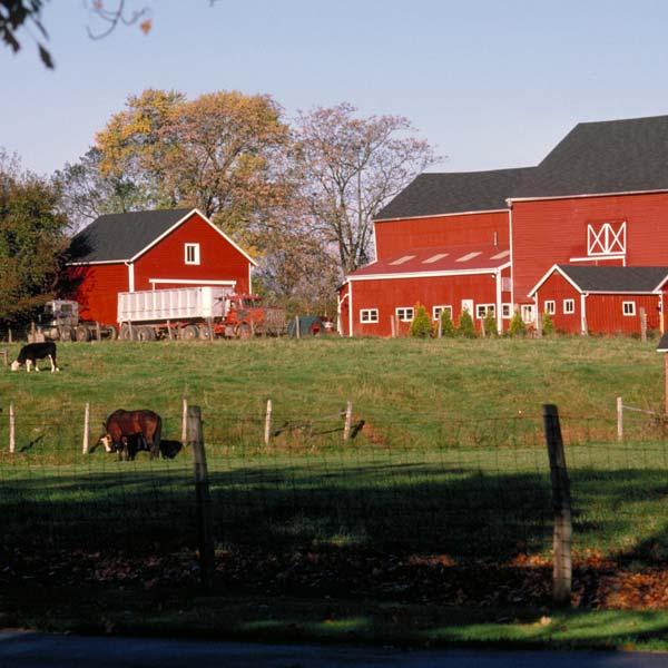 farms for sale Saskatchewan